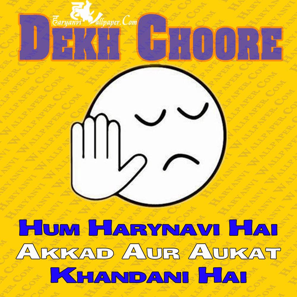 Dekh Choore - hum haryanvi hai